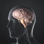 effects of low serotonin
